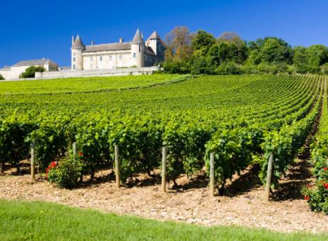 Plan Your Trip Best Wine Routes